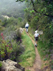 Hikers on McMenemy Trail